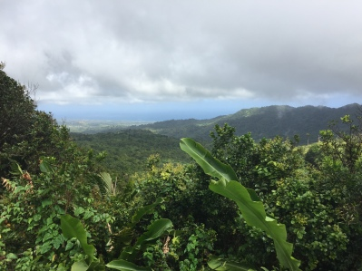 More beauty of Grenada