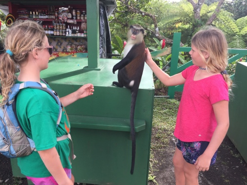 If you know our girls at all you KNEW this monkey was going to get a back scratch!