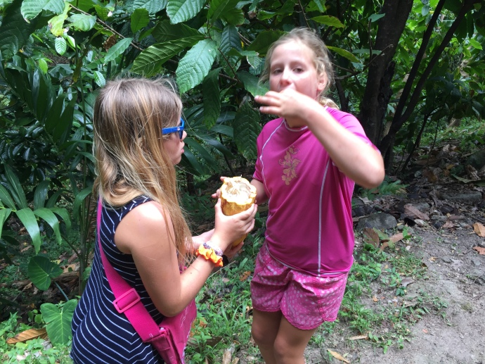 The Girls eating cacao seeds on the trail.