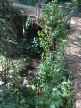 Oldest iron bridge in Grenada, second oldest in the Caribbean. (Oldest is in Jamaica)